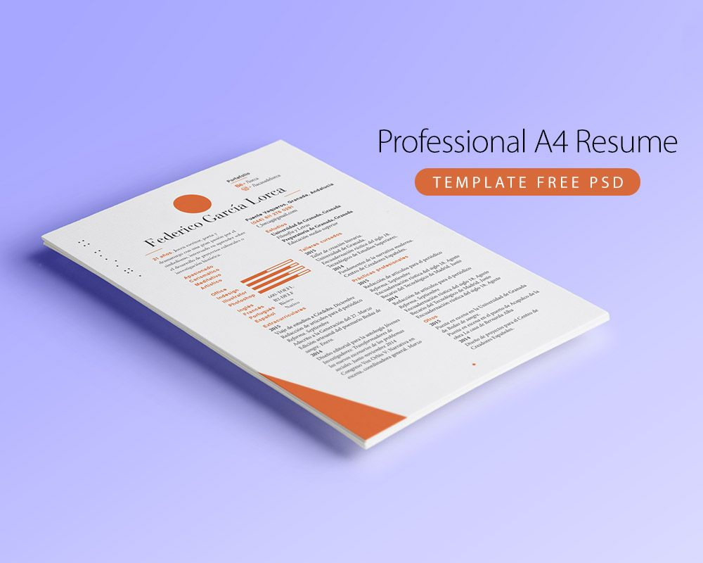 Cool Professional A4 Resume Template Free Psd Download Professional
