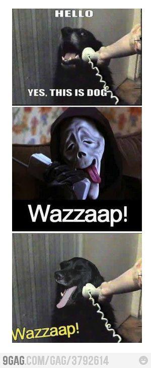 wazzap