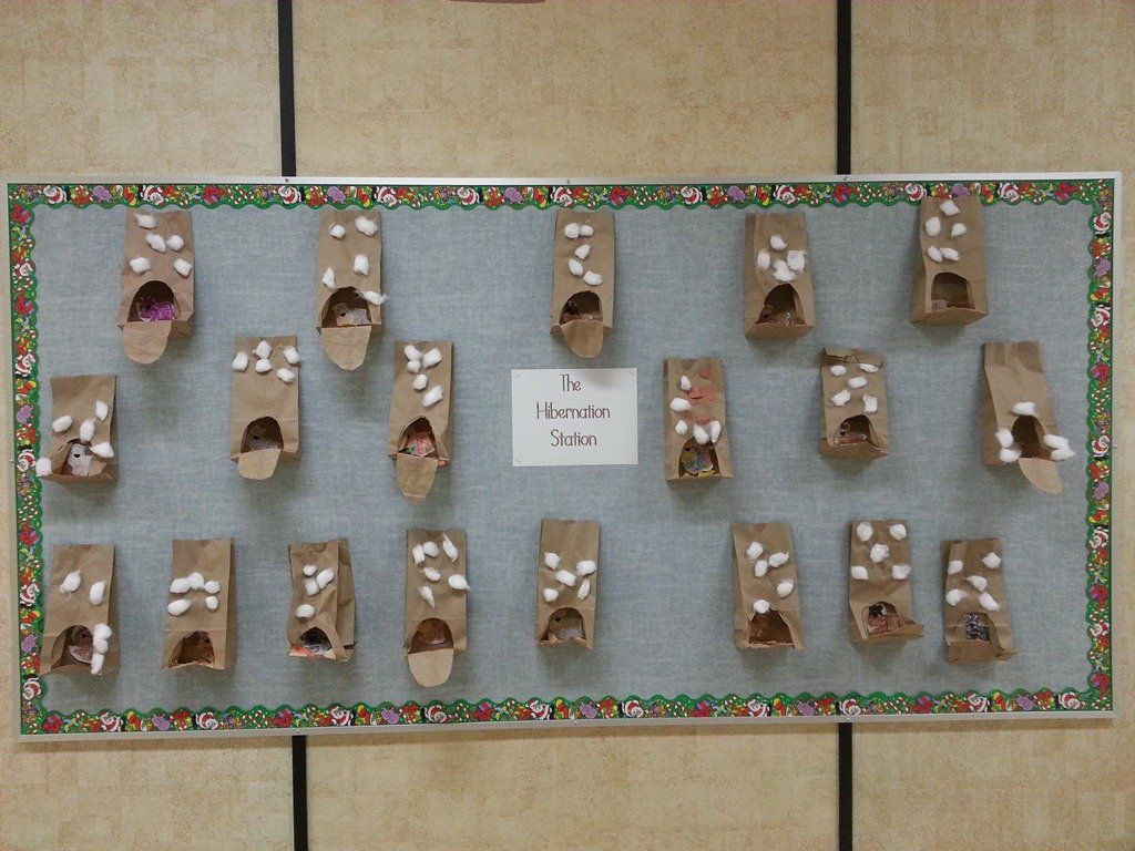 Hedgehog Classroom Decor