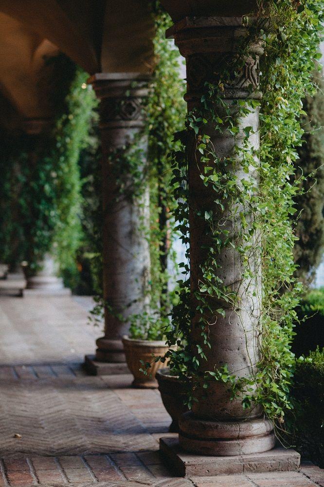 French Courtyard Garden Ideas Vines