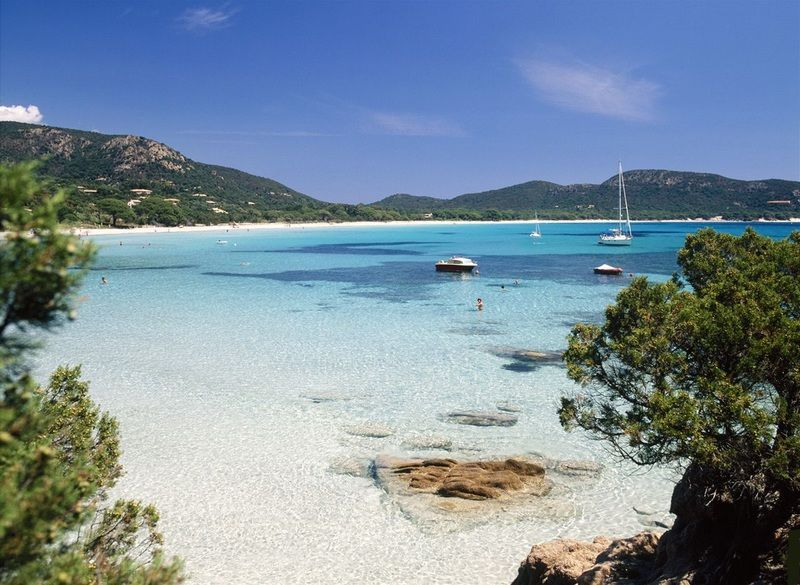 palombaggia beach france - Google Search