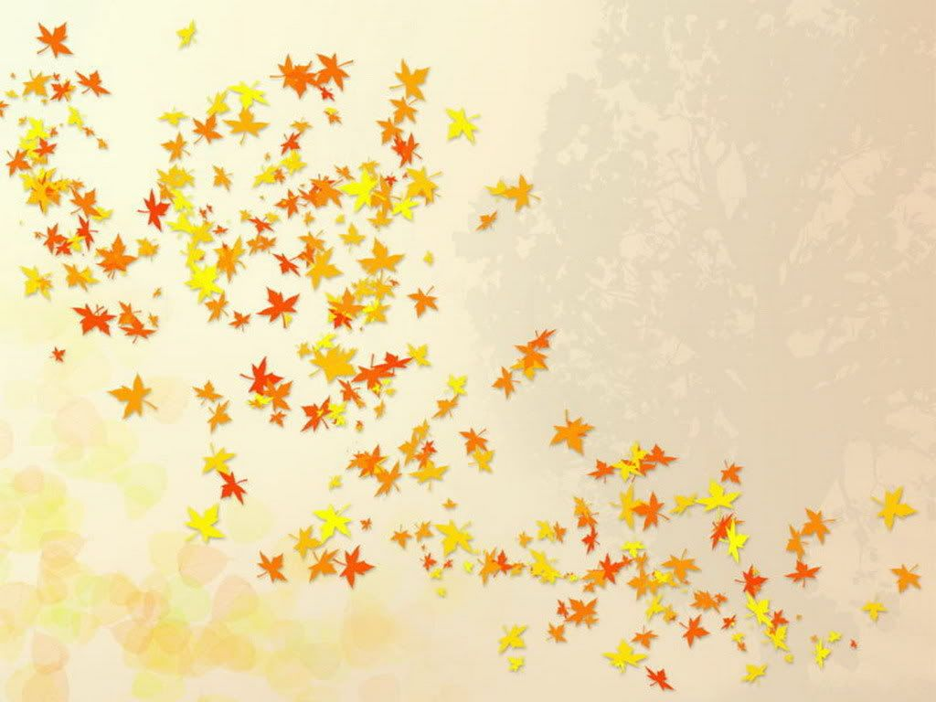 fall leaves background falling leaves nature template