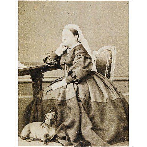 Queenvictoria And Her Beloved Daschund Queenvictoriadachshund