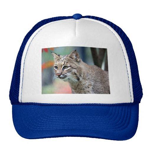 Bobcat Trucker Hats From Zazzle Com Hats Baseball Trucker Hat Trucker