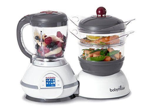 Babymoov NutriBaby Zen Food Processor with Steaming, Sterilizing - food processor sample resume