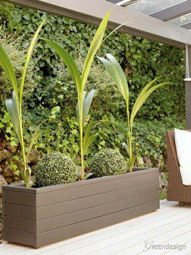 Jardineras grandes o u t d o o r gardens pinterest for Jardineras para interiores