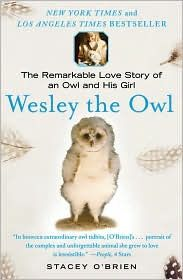 Wesley the Owl by Stacey O'Brien.
