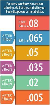 How Long Does Alcohol Stay In Your System Alcohol System Infographic