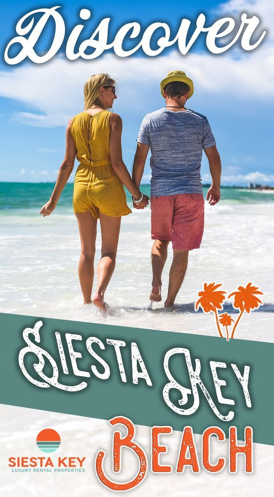Things To Do On Vacation Siesta Key When You Visit Sarasota Florida Beachessarasota Floridavenice