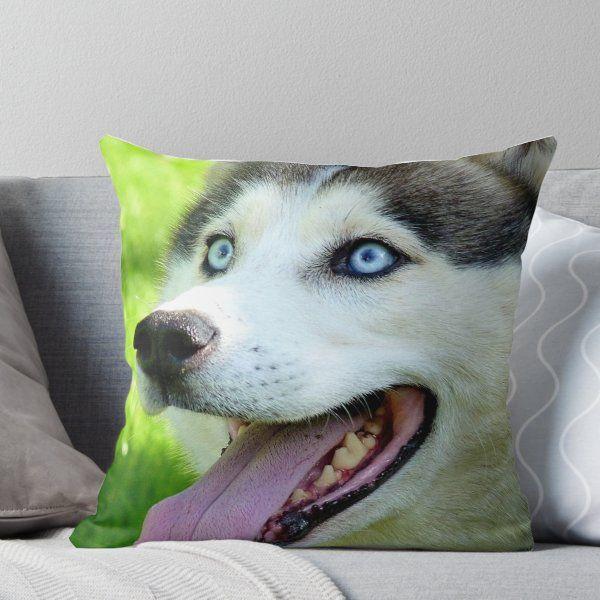 Micky Blue Eyes Siberian Husky Dog Nz Throw Pillow Siberian