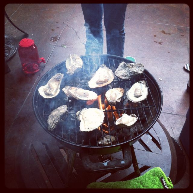 Oysters on the grill today, yum!
