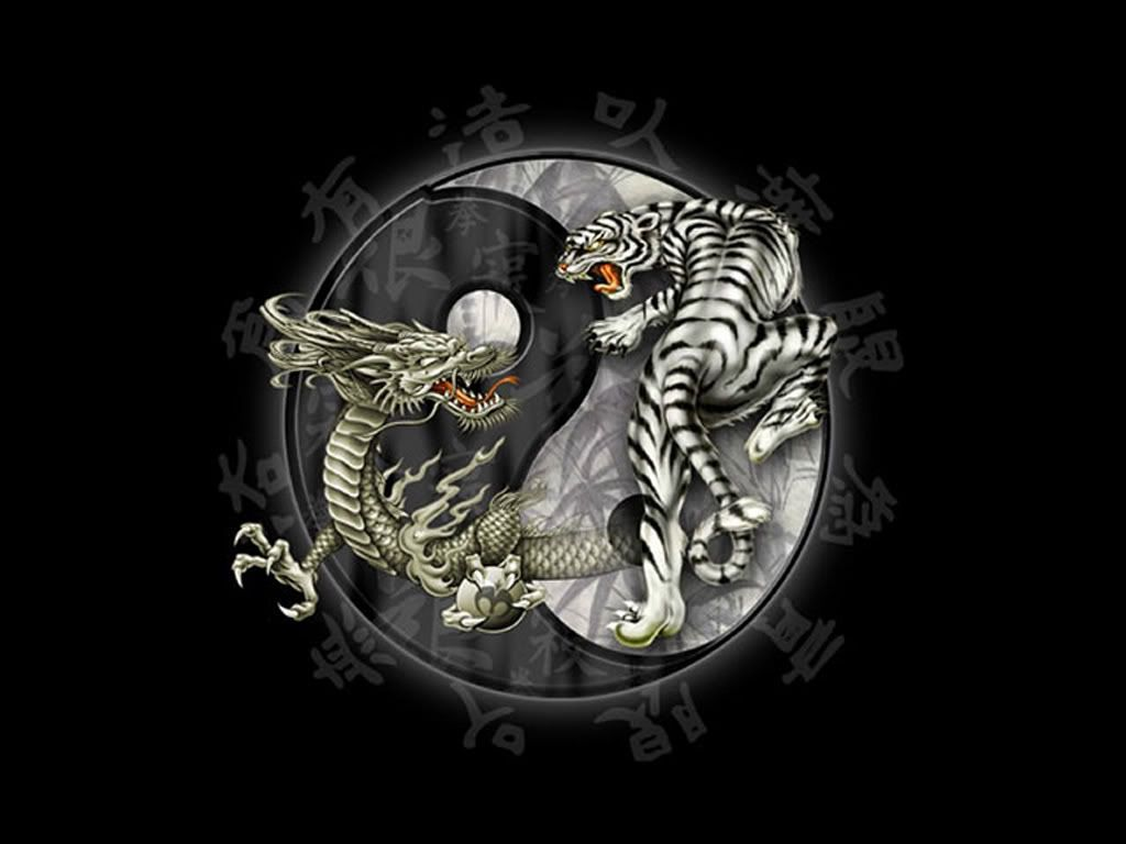 Yin Yang Dragon Tiger Pictures Images And Photos Tattoos In