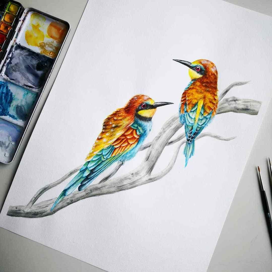 European Bee Eaters Watercolor Painting Hagalaz Painting Art Artwork