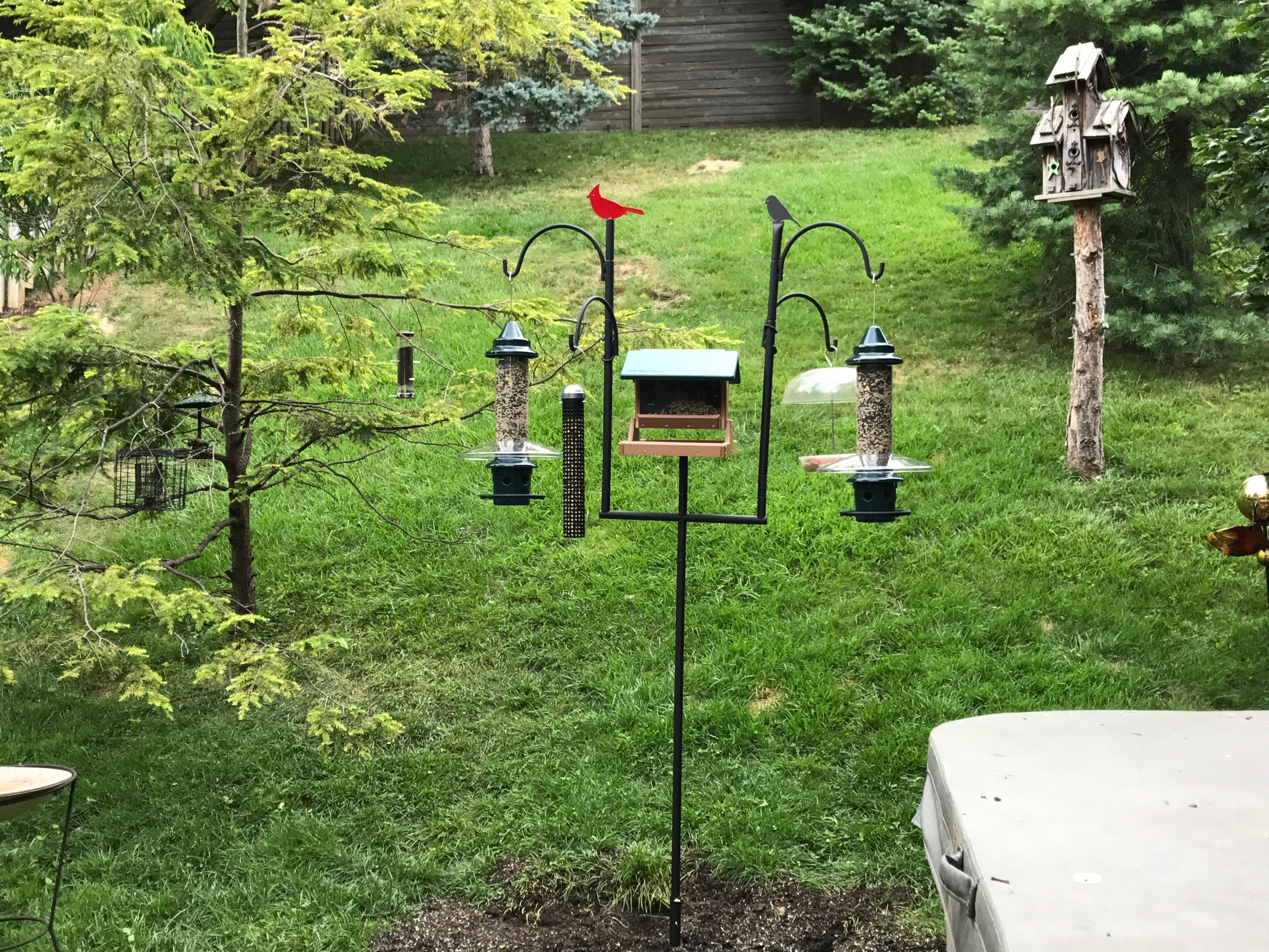 My Ultimate Advanced Pole System From Wild Birds Unlimited Love It Wild Birds Unlimited Wild Birds Crazy Bird