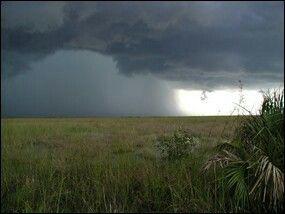 Everglades thunderstorm