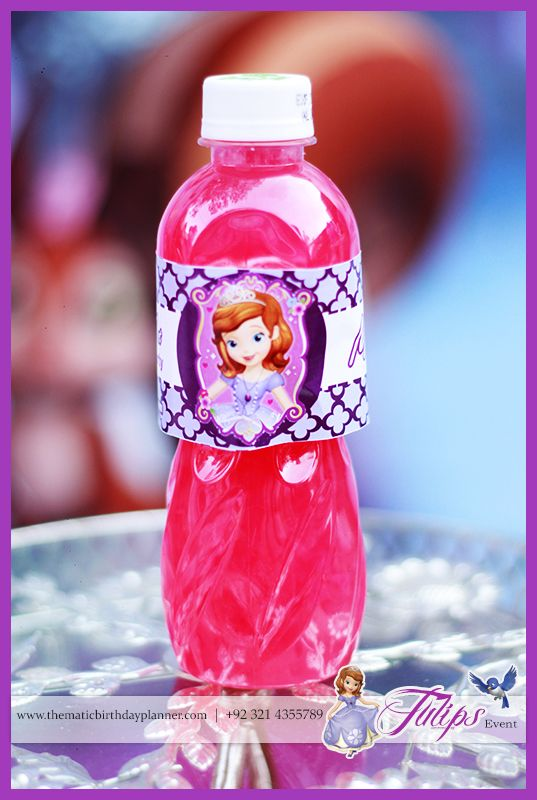 Sofia The First Girls Party Theme ideas in Lahore Pakistan 11