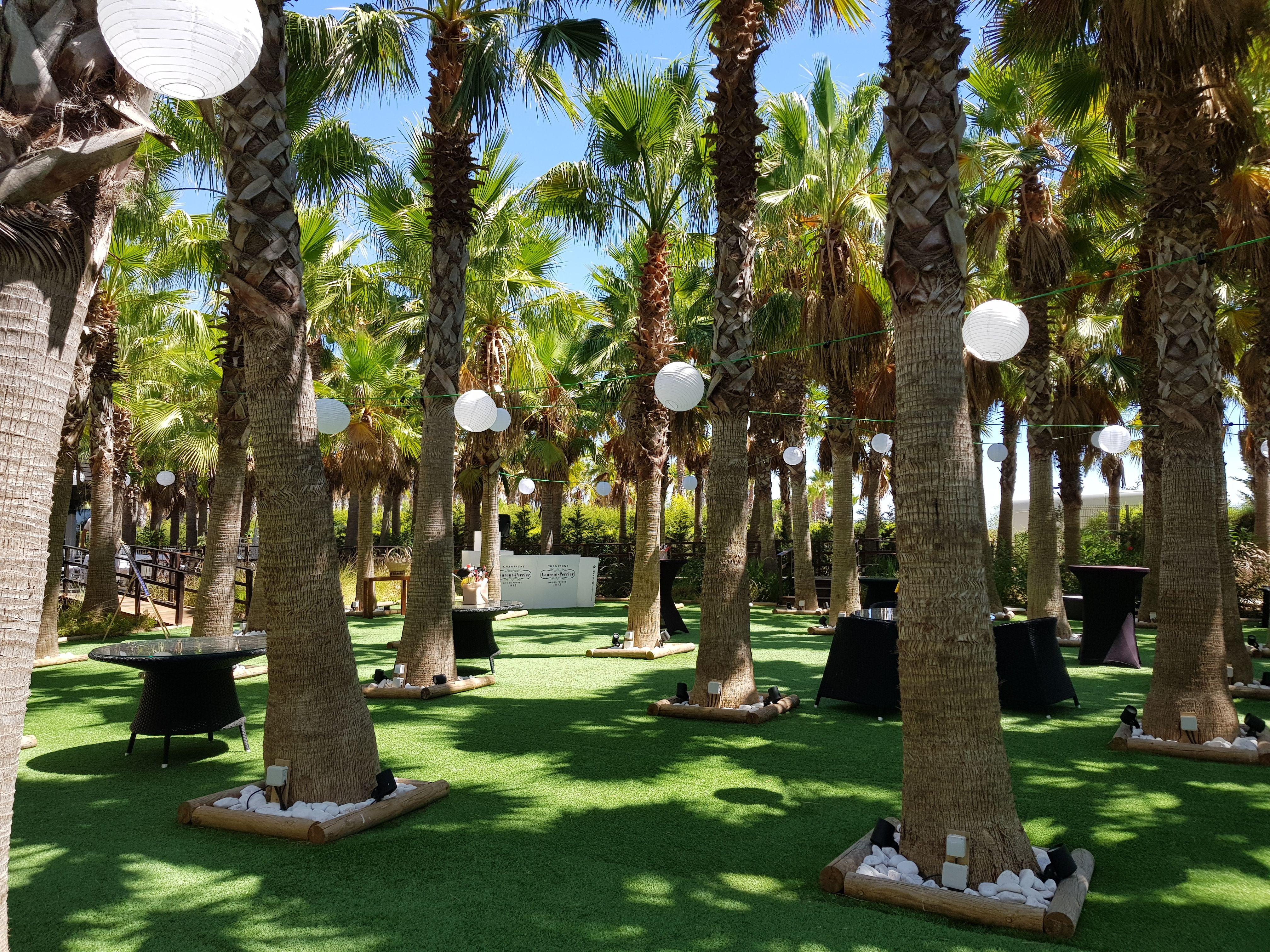 Algarve Palm Tree Gardens Wedding, Portugal | Weddings in the ...