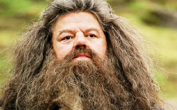 Hagrid Has The Idea Harry Potter Creatures Harry Potter Characters Harry Potter Facts