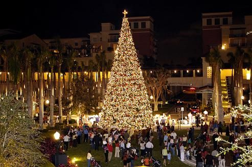 Christmas Event In Florida.Christmas In Miami Lillyholiday Holiday Christmas