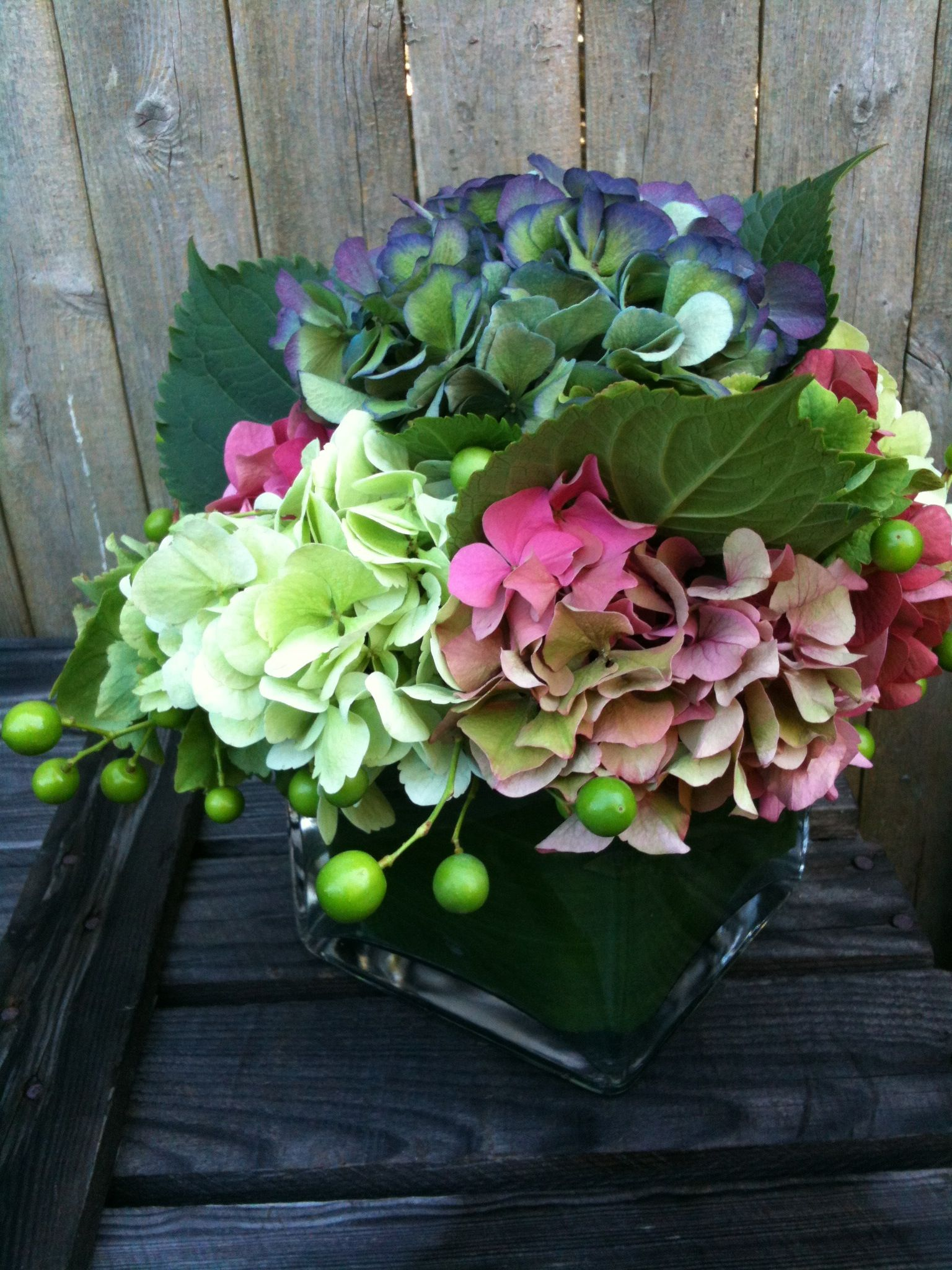 There Are Three Types Of Flowers That Bloom In A Hydrangea They Mophead Panicle And Lacecap