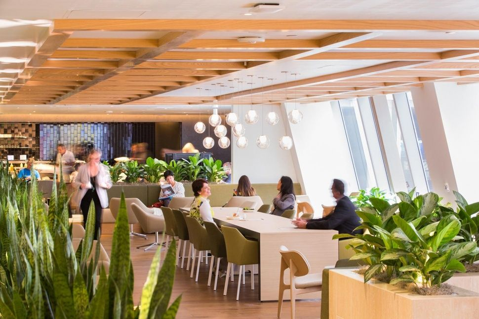 The World S Best Airport Lounges Digital Trends Lounge Interiors Airport Lounge Green Lounge