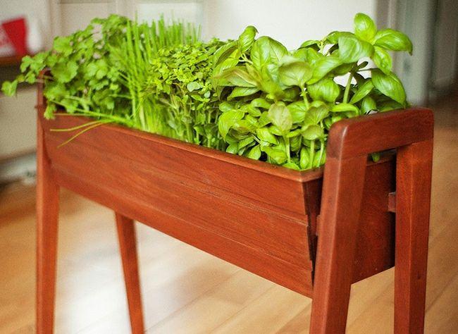 mini jardini res et pots d int rieur aux herbes aromatiques jardiniere interieur int rieurs. Black Bedroom Furniture Sets. Home Design Ideas