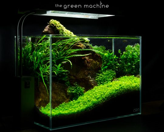 Red Rock Aquascape Journal By James Findley   Learn How To Aquascape With  Our Free Aquascaping