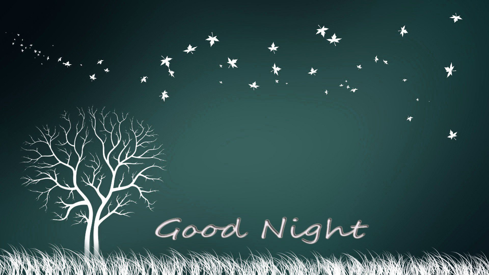 Good Night Picture Wallpaper Free Download 1024—795