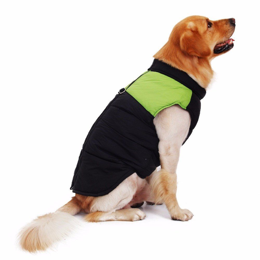 100 Free Shipping Is Available On This Product Shop Now Www Petzpoint Com Dog Pet Dog Summer Clothes Dog Winter Clothes Pet Jackets