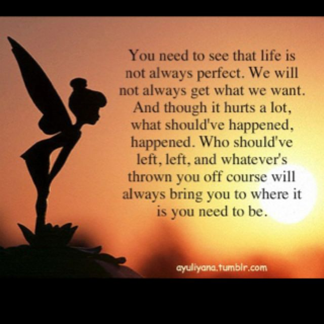 Thank You Tinkerbell