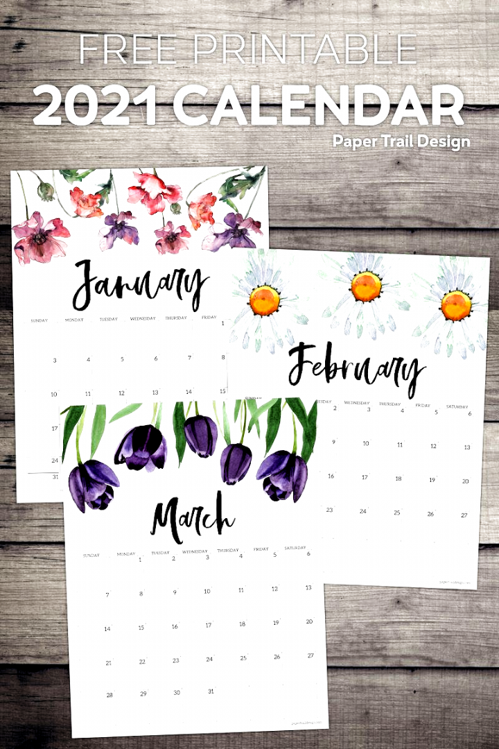 Free Printable 2021 Calendar Pages With Floral Embellishments Print These Cute Decorative Calendar Pages In 2020 Free Printable Calendar 2021 Calendar Calendar Pages