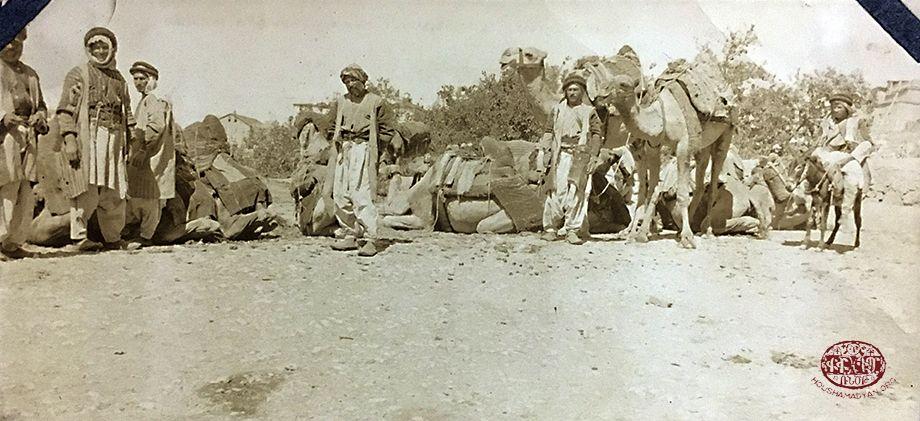 Harput bölgesi. Bir deve kervanı dinlenirken (Kaynak: Amherst College, Archives and Special Collections, William Earl Dodge Ward Papers)