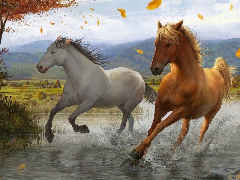 Les Fonds D Ecran Une Illustration Representant Deux Chevaux Au Galop Dans L Eau Animales Painted Horses Cheval Galop