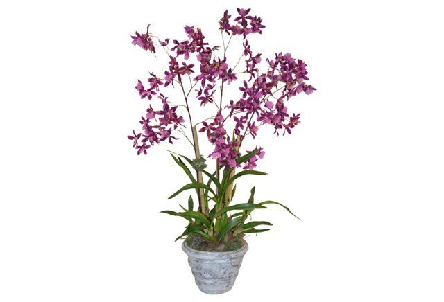 """37"""" Orchid in Planter, Faux"""