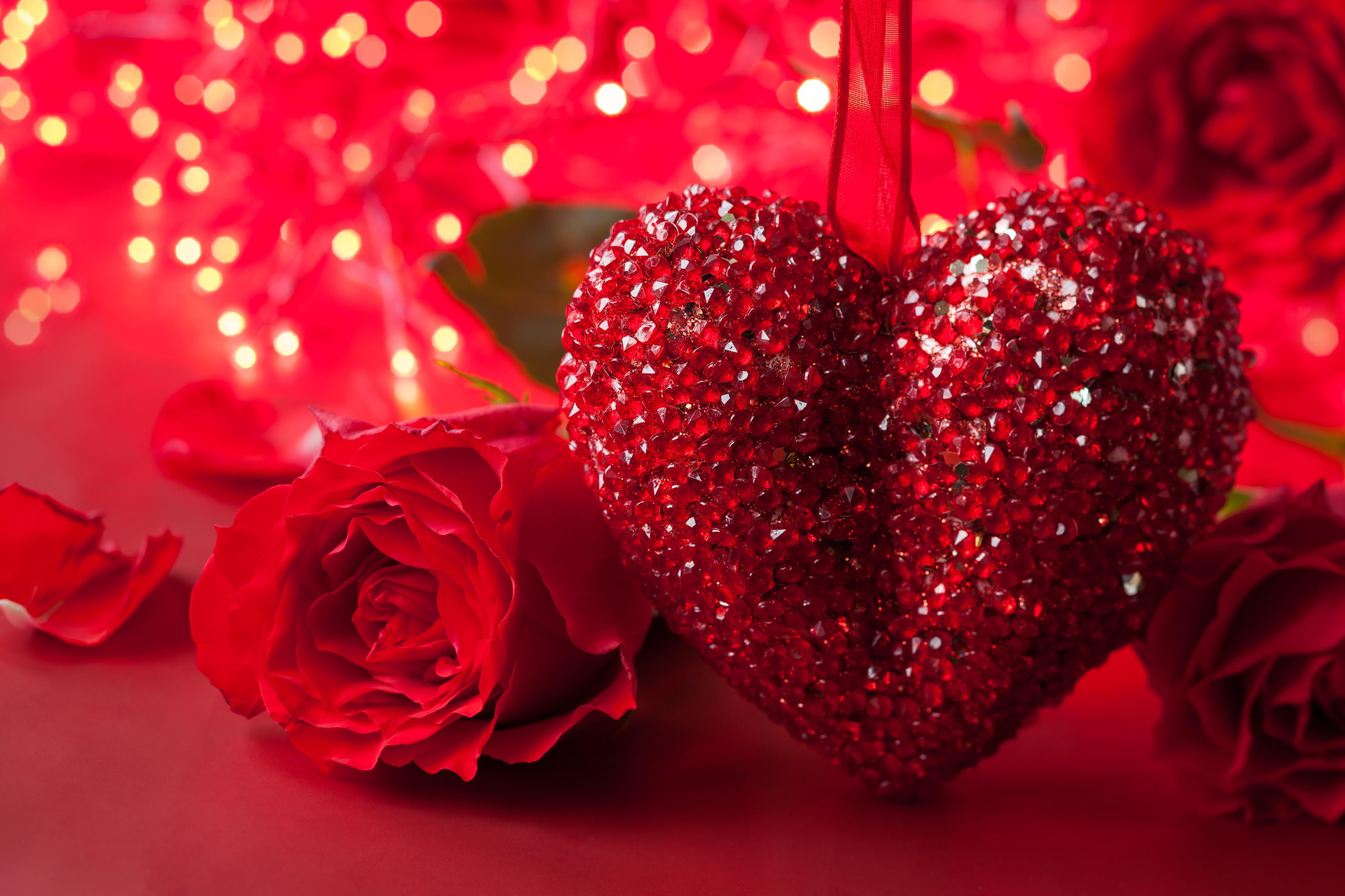 Lovely Red Heart Attractive Wallpapers Download Rose