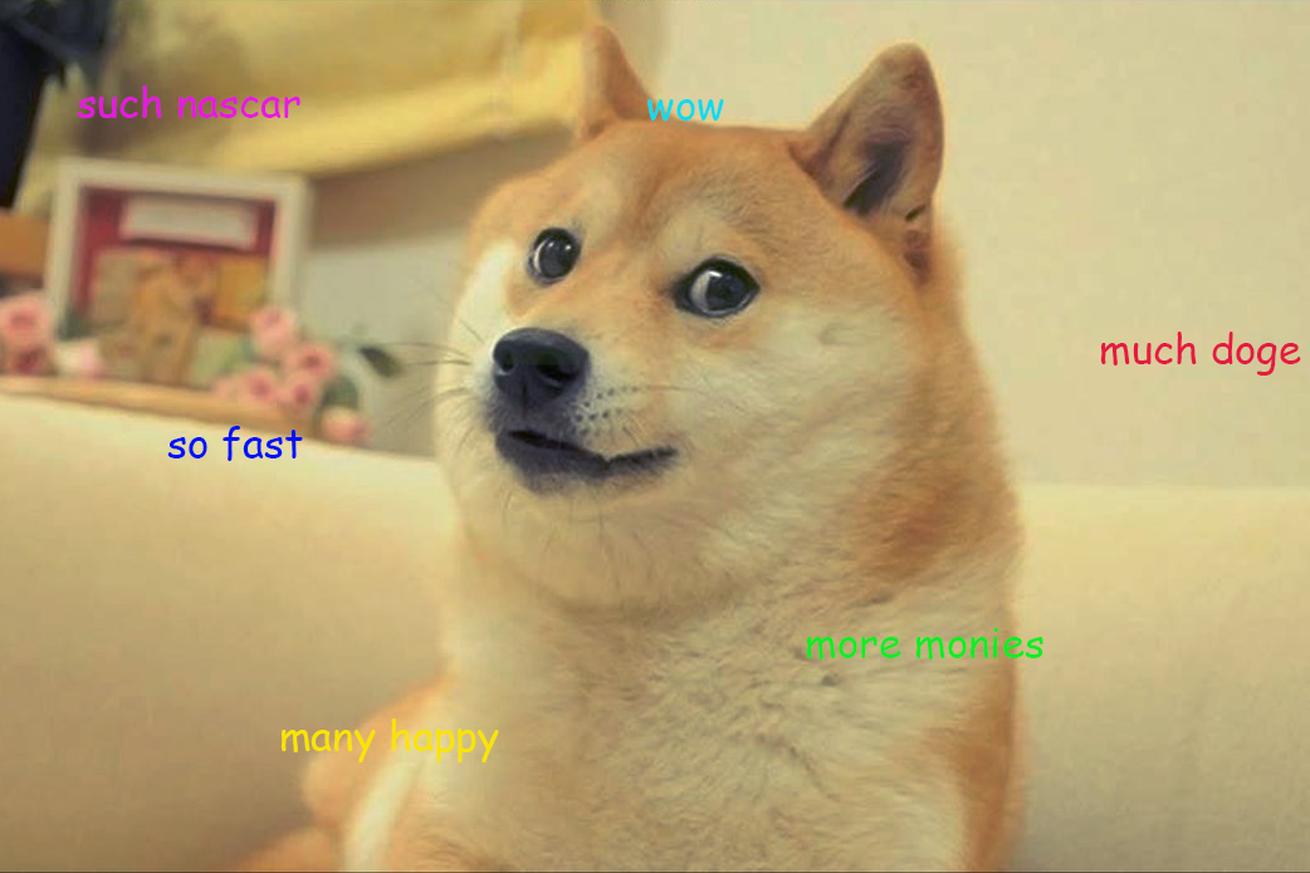 Doge, Reddit Nascar version | Memes | Animal memes, Shiba