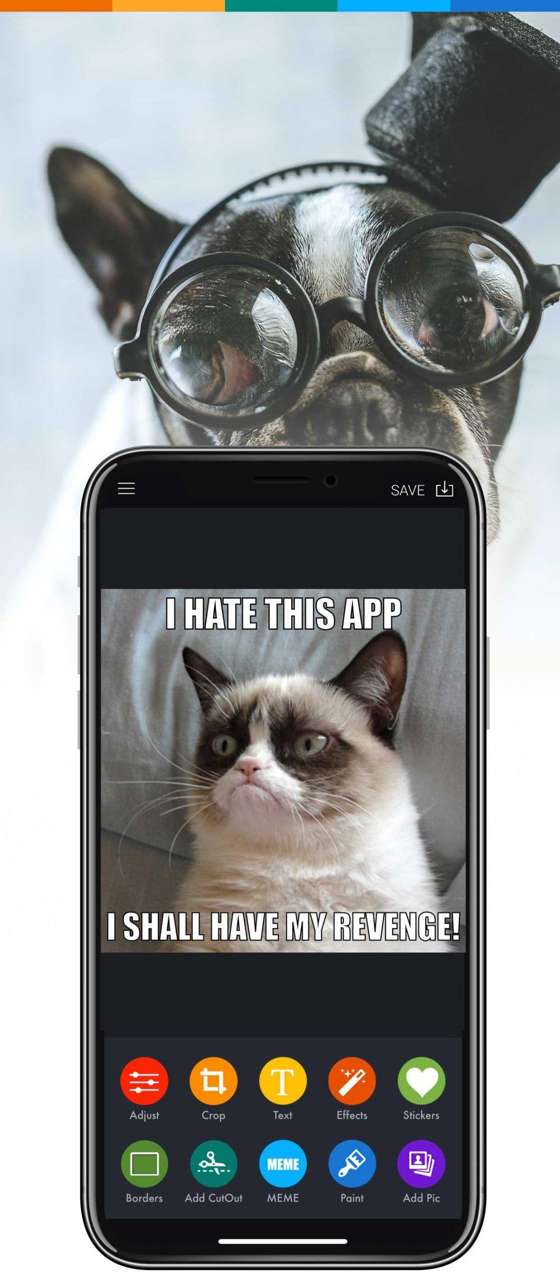 MEME Maker App Create MEMEs online in 2020 Funny meme