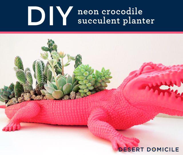 DIY Crocodile Succulent Planter – So cute for #spring!