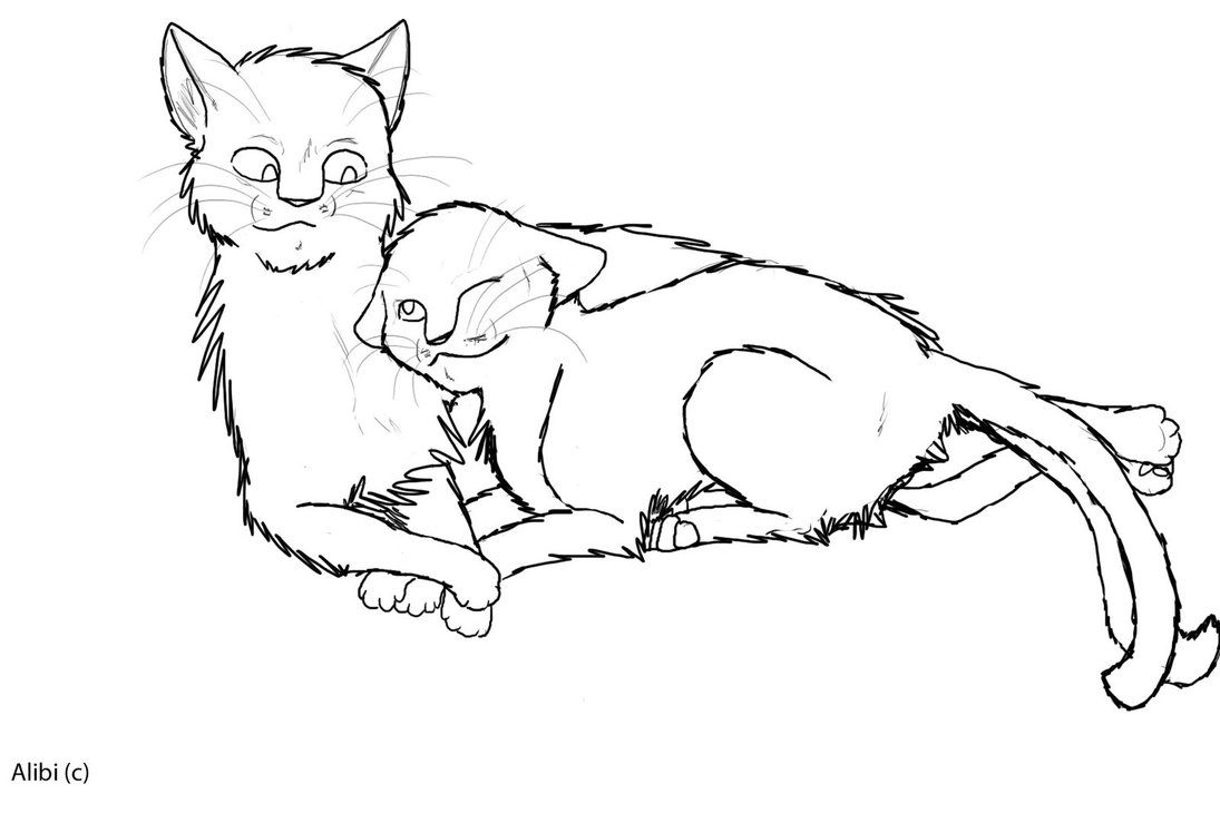Warrior Cats Tom And She Cat Cat Coloring Page Warrior Cats