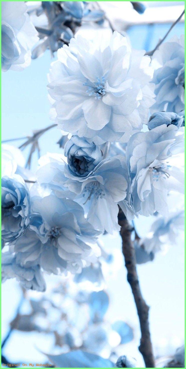 Pin By Samiyamohames On Novye Printy In Blue Flower Wallpaper Blue Aesthetic Pastel Blue Wallpaper Iphone