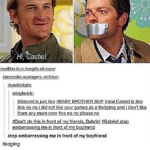 Now i need a picture of fledgling Cas  Preferably being tormented by