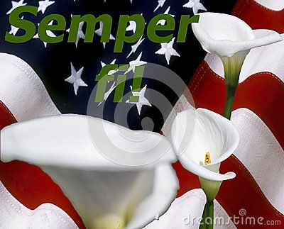Semper fi! with calla lily and stars and stripes USA flag