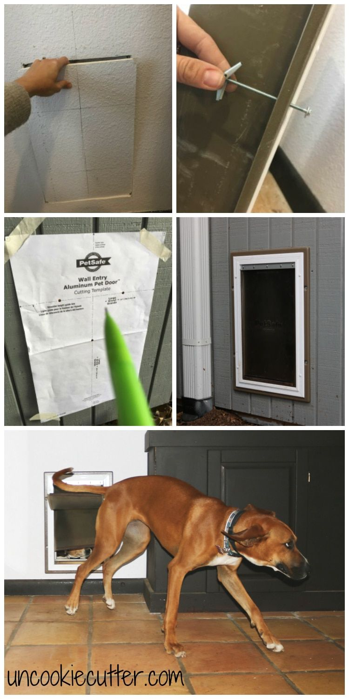 Dog door in the wall installation dog door installation