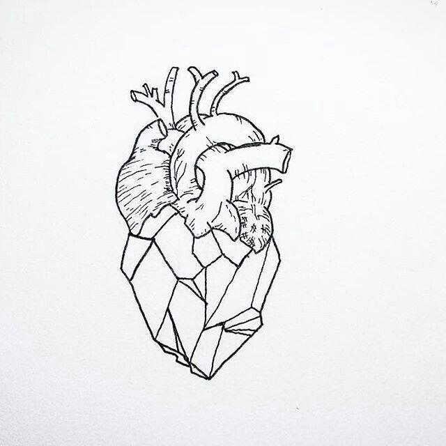 Grafico De Corazon Geometric Anatomical Heart Doodle Corazon
