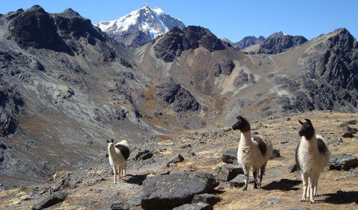 New Destinations Andes Of Bolivia Bolivia Peru Travel Andes