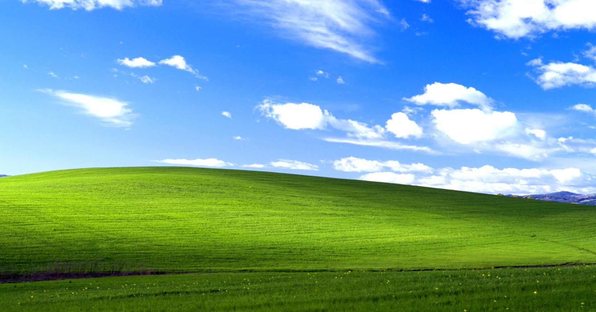 This Famous Desktop Wallpaper Is Actually A Real Untouched Photo Windows Wallpaper Windows Xp Backgrounds Desktop