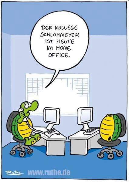 Schlohmeyer is working from home today\