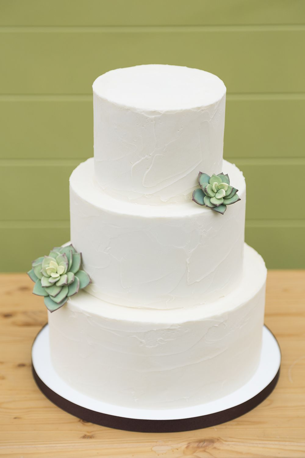 Simple Succulent Wedding Cake Cidy Tuttle Photography