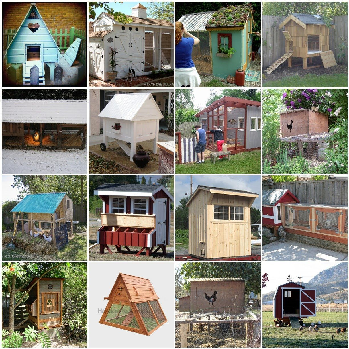 Different Types Of Backyard Chicken Coops The Poultry Guide Chickens Backyard Chicken Coop Plans Chicken Coop Designs Backyard chickens coop designs