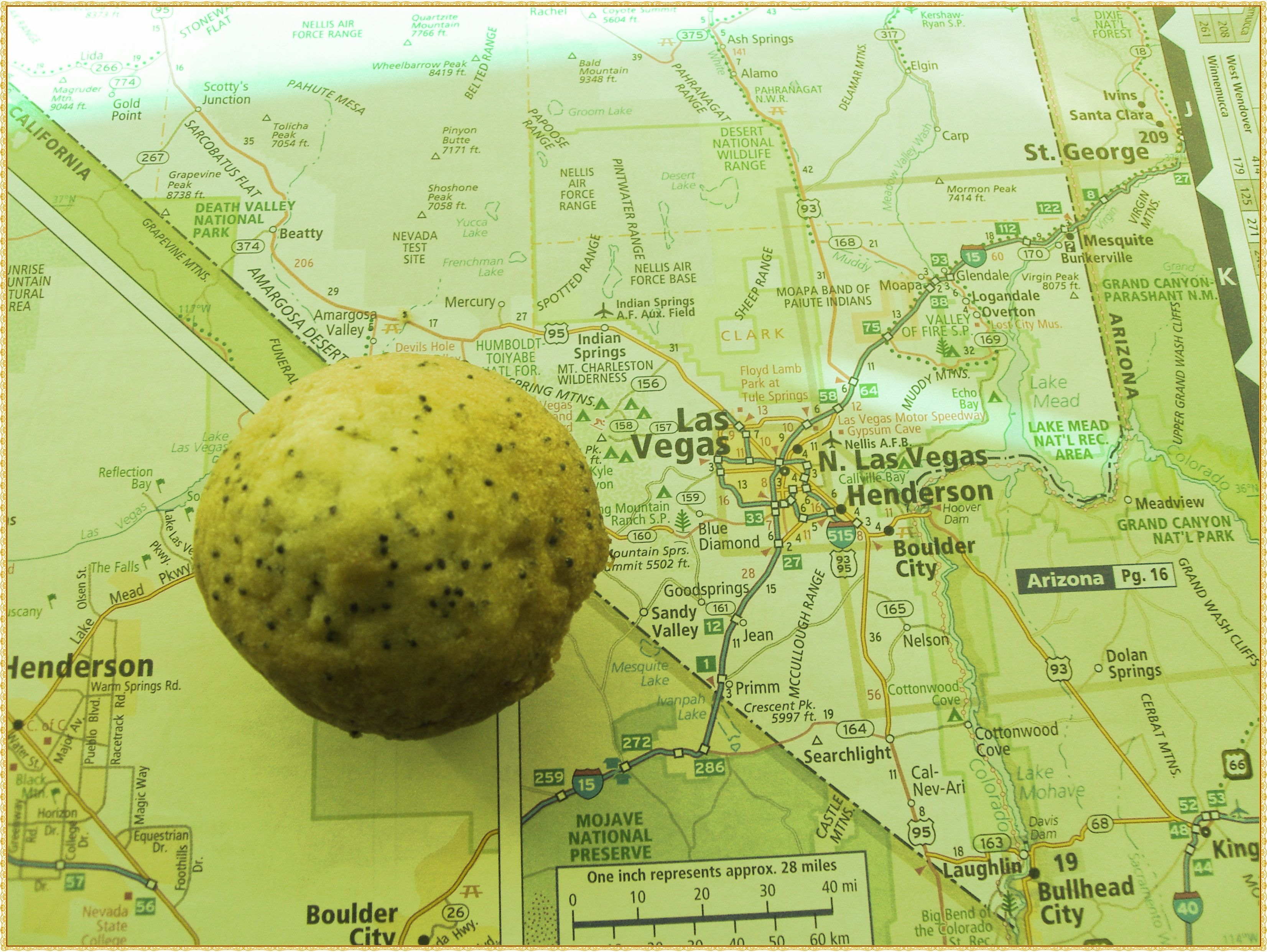 """Wohin fahren? Was soll ich mitnehmen? Brauche ich eine Karte? Viele Fragen können auftauchen, wenn der erste USA Urlaub gebucht wurde. Super ;-)  Vergesst Trump! Packt die Koffer! Das Buch: """"Hamburger safari Tipps & Tricks für deine 1. USA Reise"""" hilft dir und hat viele lustige Sach- und Lachgeschichten für dich parat und viele Tipps :-) Jetzt """"Hamburger safari Tipps & Tricks für deine 1. USA Reise"""" bestellen. #reise #usa #amerika #usareise  (c) Anika Bischoff www.hamburgersafari.de"""